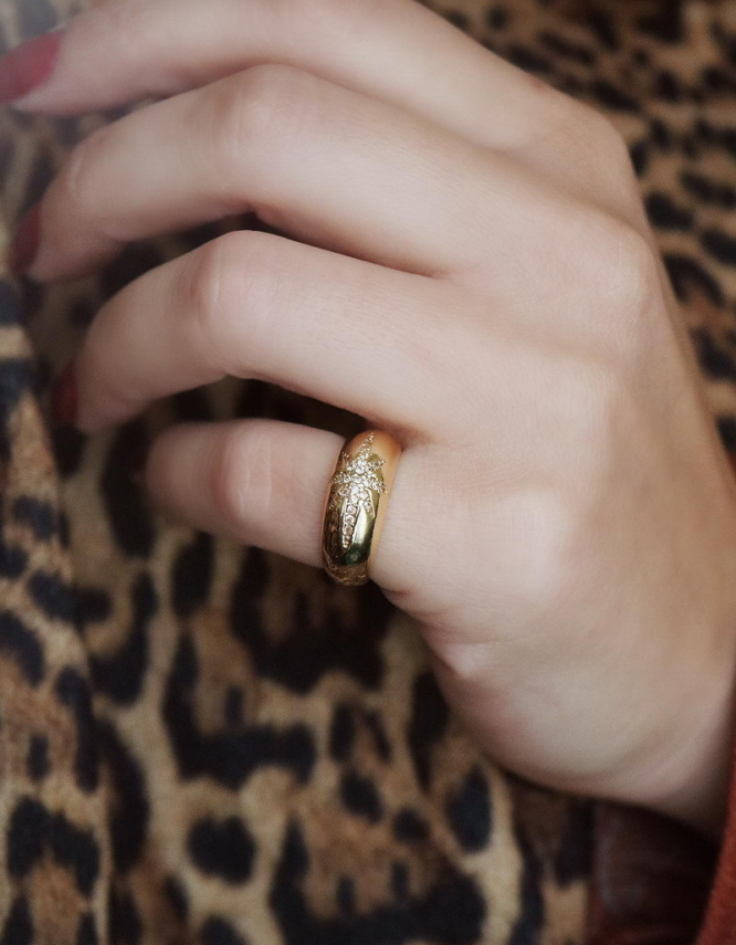 Πολικός Αστέρας Δαχτυλίδι Chevaliere