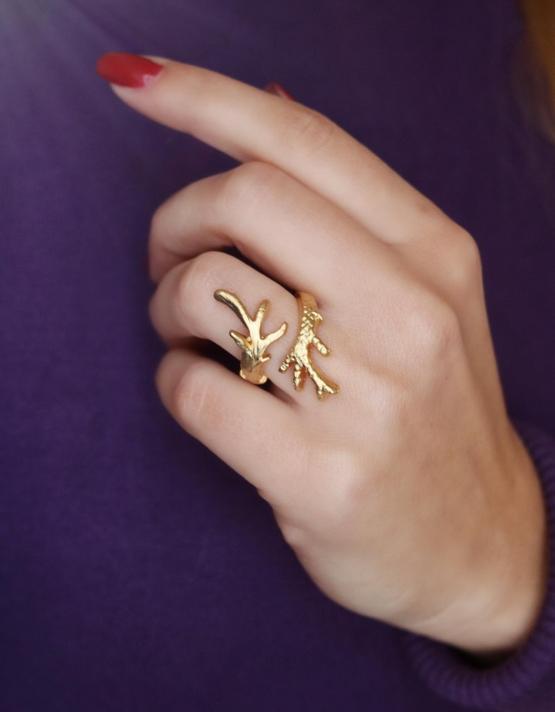 Κλαδί Δαχτυλίδι